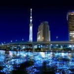 関東近郊の日帰りデートスポット☆日帰りでも遊びつくそう!!のサムネイル画像