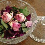 しおれたお花が大変身する素敵な香りのポプリの作り方をご紹介しますのサムネイル画像