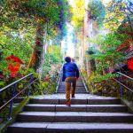 【パワースポット】冬の週末旅デートは、箱根に行こう♪【ほっこり温泉】のサムネイル画像