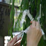 神さまお願い!素敵な人に巡り会いますように☆縁結び神社ランキングのサムネイル画像