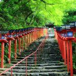 夏の京都でデートするならここ!おすすめデートスポットをご紹介!!のサムネイル画像