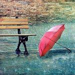 雨が降ってもへっちゃら!防水バッグで雨の日のお出かけもらくらく♡のサムネイル画像
