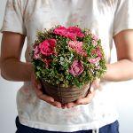 《初心者におススメ》お花のバスケットアレンジ楽しんでみませんか?のサムネイル画像