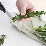 初心者でも簡単に出来る!お花や多肉植物の挿し木の方法まとめ!のサムネイル画像