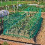 ガーデニングにネットを活用!作物の食害を防ぐ便利商品6選。のサムネイル画像
