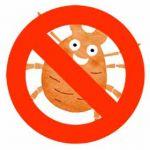 布団掃除機があれば、あなたの家に潜むダニ退治はバッチリです!のサムネイル画像