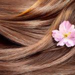 貴方の髪の毛の質はどの様なタイプ?自身の髪の毛の質を見てみようのサムネイル画像