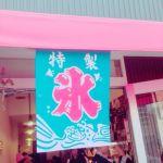 夏に巡りたい!都内の有名で美味しいかき氷を食べ尽くしましょう!!のサムネイル画像