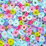 【女の子らしい】キュートな着こなしが出来るのが花柄パーカーのサムネイル画像