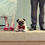 結婚前の試練!結婚式準備で喧嘩しやすい原因&喧嘩を避けるコツのサムネイル画像