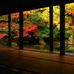 京都に行ったら立ち寄りたい、おしゃれなファッションスポット10選のサムネイル画像