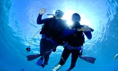 ヌメア発 ポンツーン体験ダイビング 「ALIZEの日本人インストラクターと潜る」<体験ダイビング>