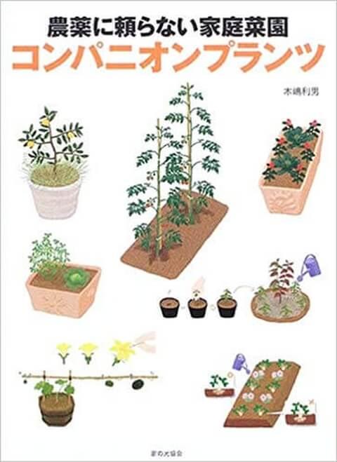 農薬に頼らない家庭菜園