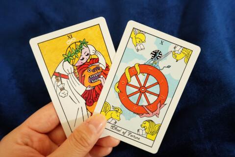 マカロンタロット-カード