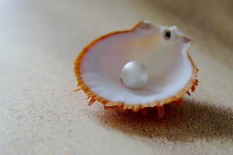 真珠のイメージ