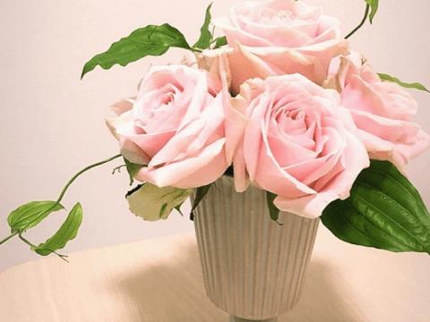 花言葉 バラ 色