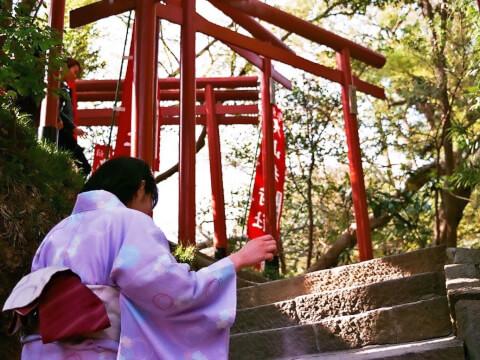 鎌倉 デート 和服 着物 浴衣 レンタル