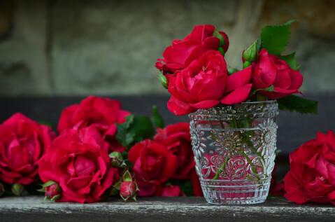 花瓶に刺さった赤い花