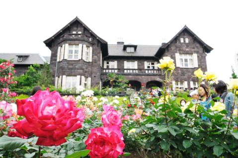 バラと旧古河邸