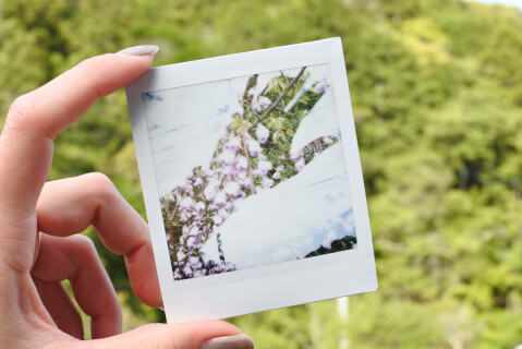instax-function
