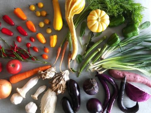 野菜 糖質制限 緑黄色野菜