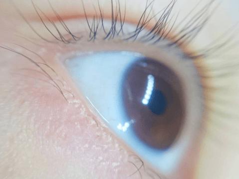 目の健康 裸眼メイク