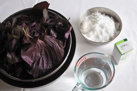 shisojuice-preparation