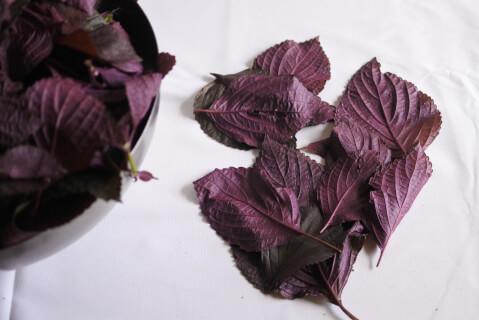 shisojuice-leaf