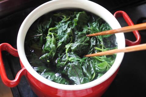 shisojuice-green