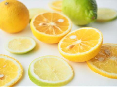 ビタミンC シトラス オレンジ 柑橘類