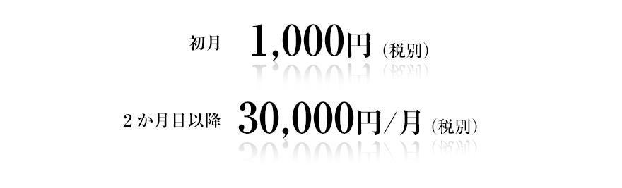 3万円/月(税別)