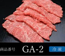 商品番号:GA-2