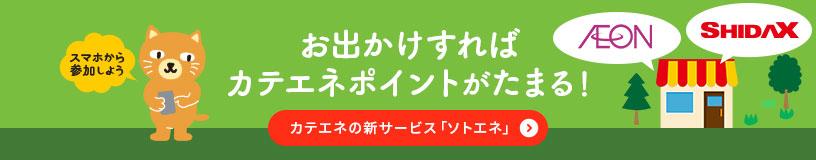 カテエネの新サービス「ソトエネ」