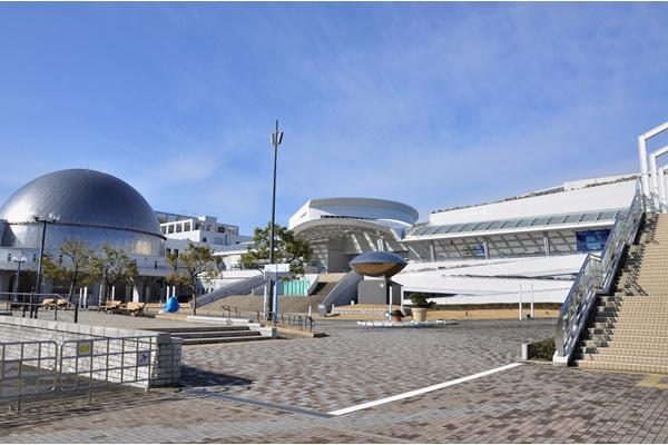 名古屋港水族館入館券