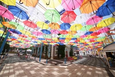 雨天憂鬱的氣氛全部一網打盡♪ 豪斯登堡「喜雨」活動,不分日夜絕佳拍攝地點