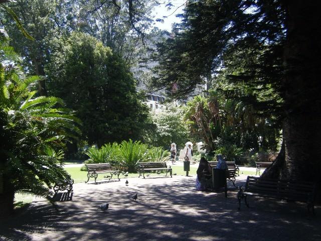 The Company's Gardens