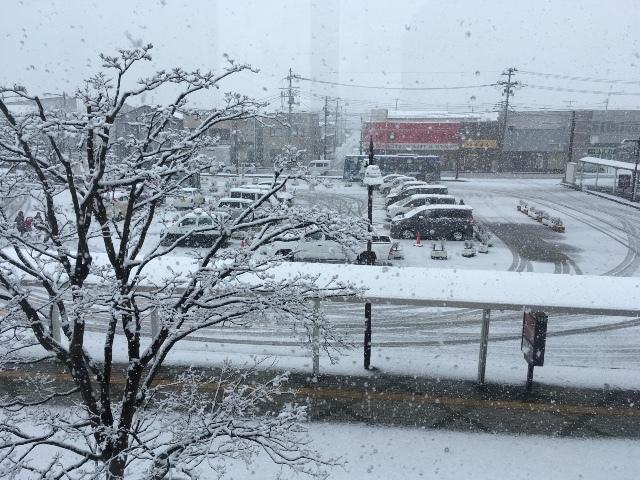 4月4日八戸市は❄️雪化粧