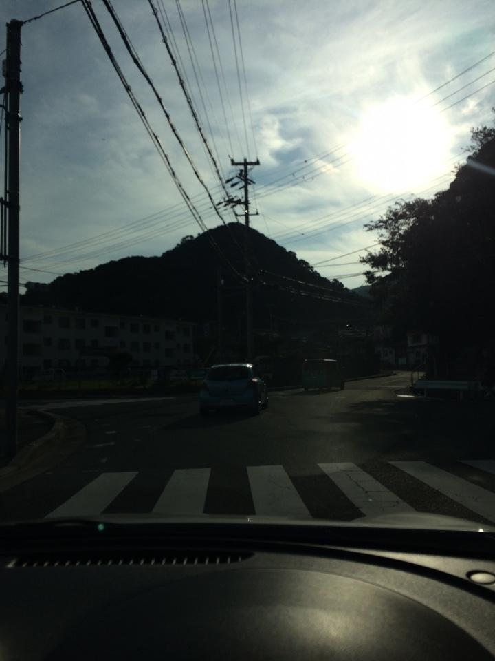 淡路島 シオンの山 1