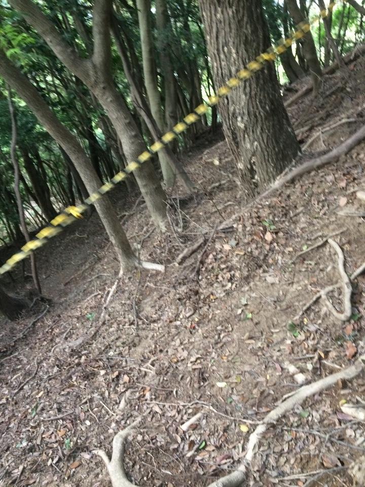 ロープ付き登り道