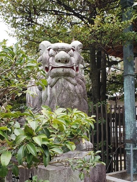 意賀美神社 拝殿の狛犬