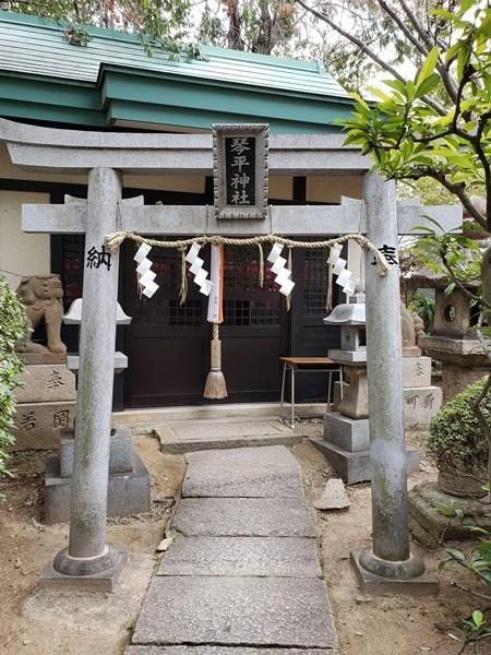 琴平神社 お社と狛犬