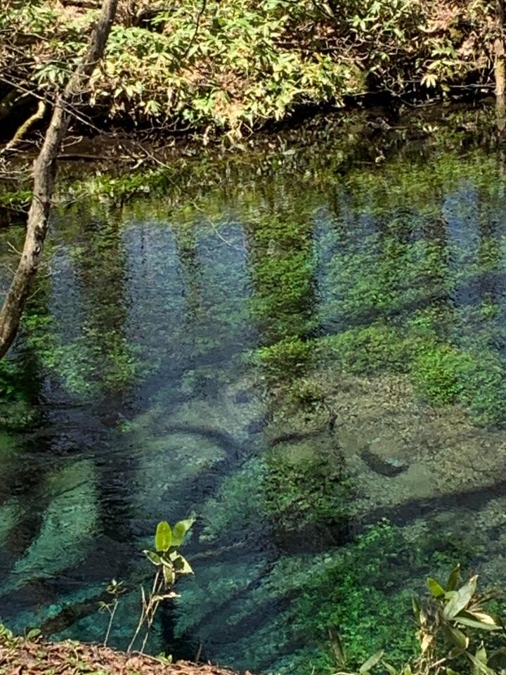 金沢清水水源