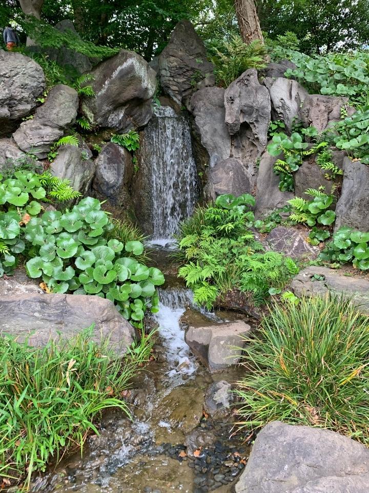 二の丸庭園の滝?