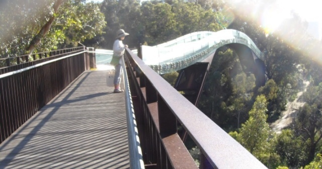 キングスパーク 透明な橋