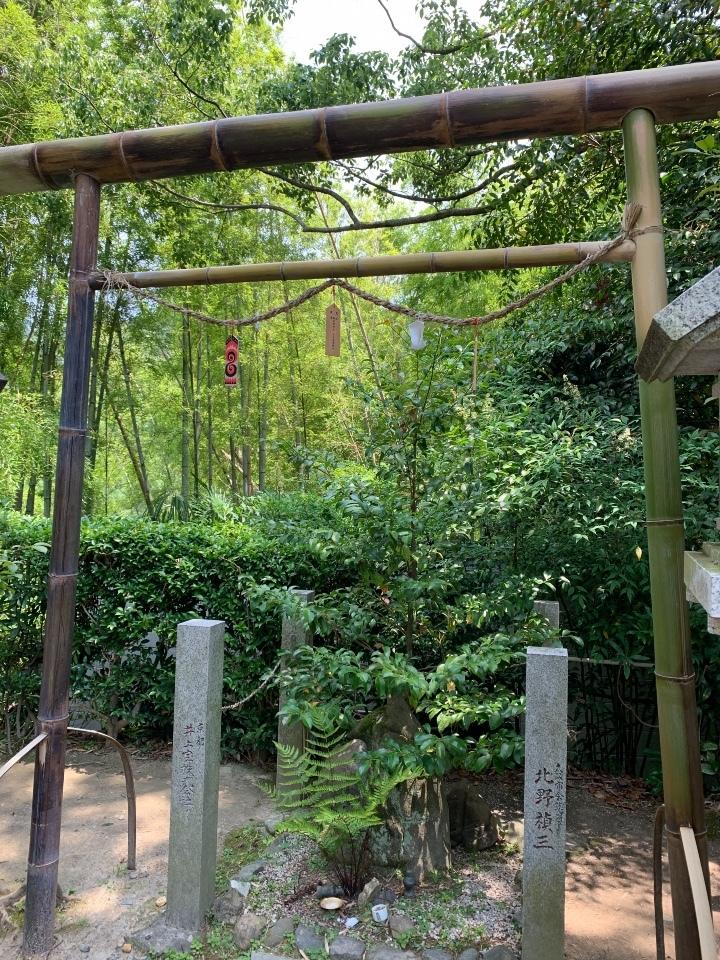 伏見神寶神社の竹の鳥居