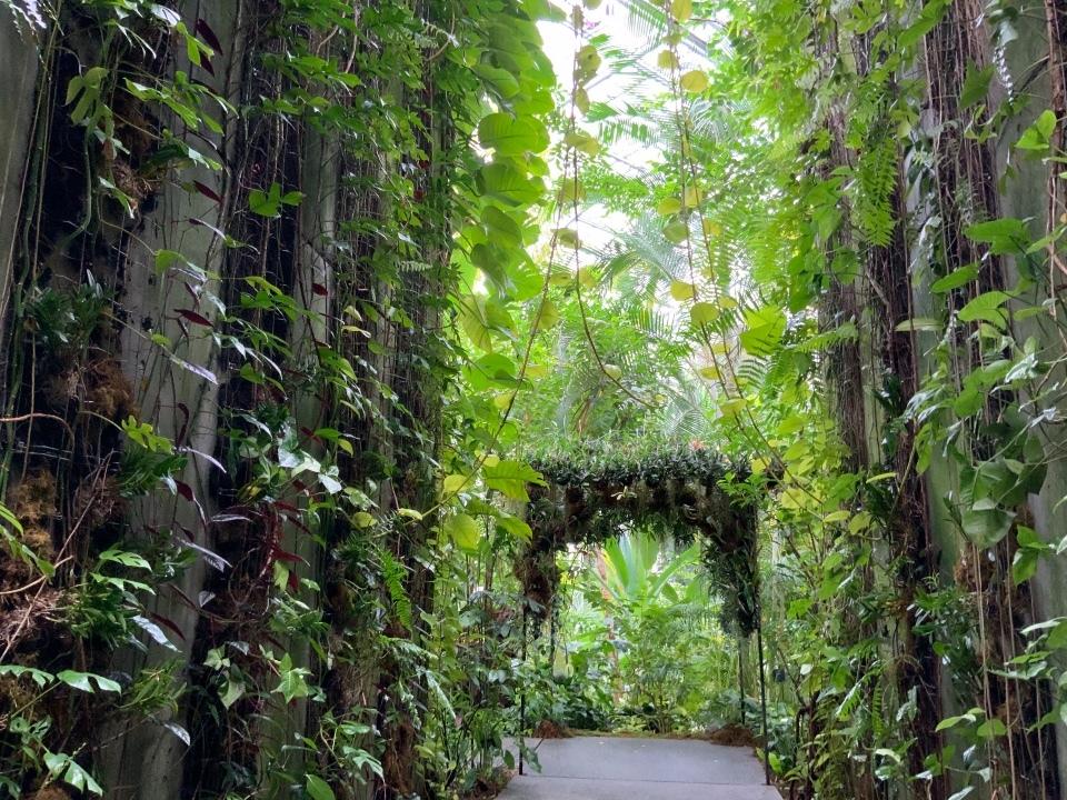 ジャングルゾーン〈温室入口〉