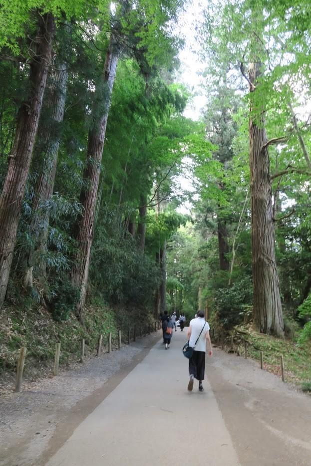 中尊寺までの道