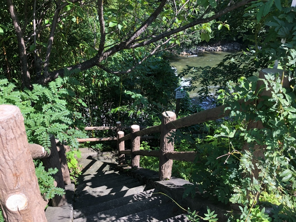 利根川遊歩道