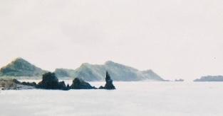 奄美大島を訪れて…