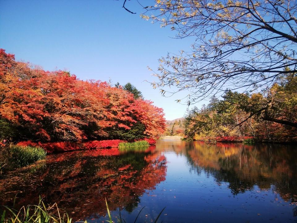秋の軽井沢